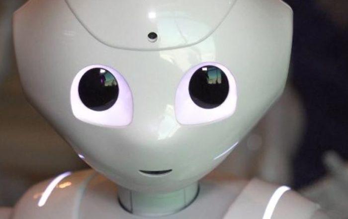STOA robot inteligencia artificial